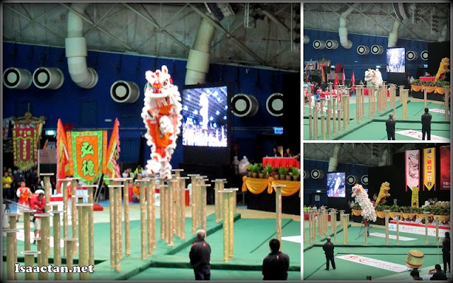 World Lion Dance Championship in progress