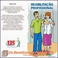 Reabilitação profissional, Previdência Social