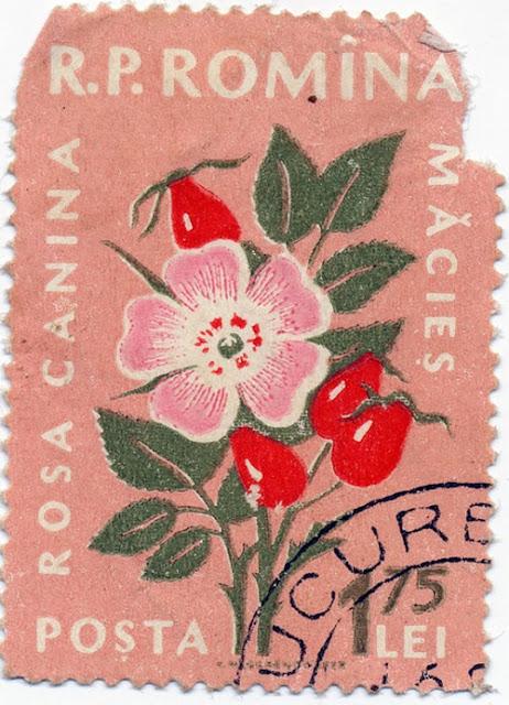 vintage postal stamp