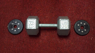 home made magnetic add on free weights