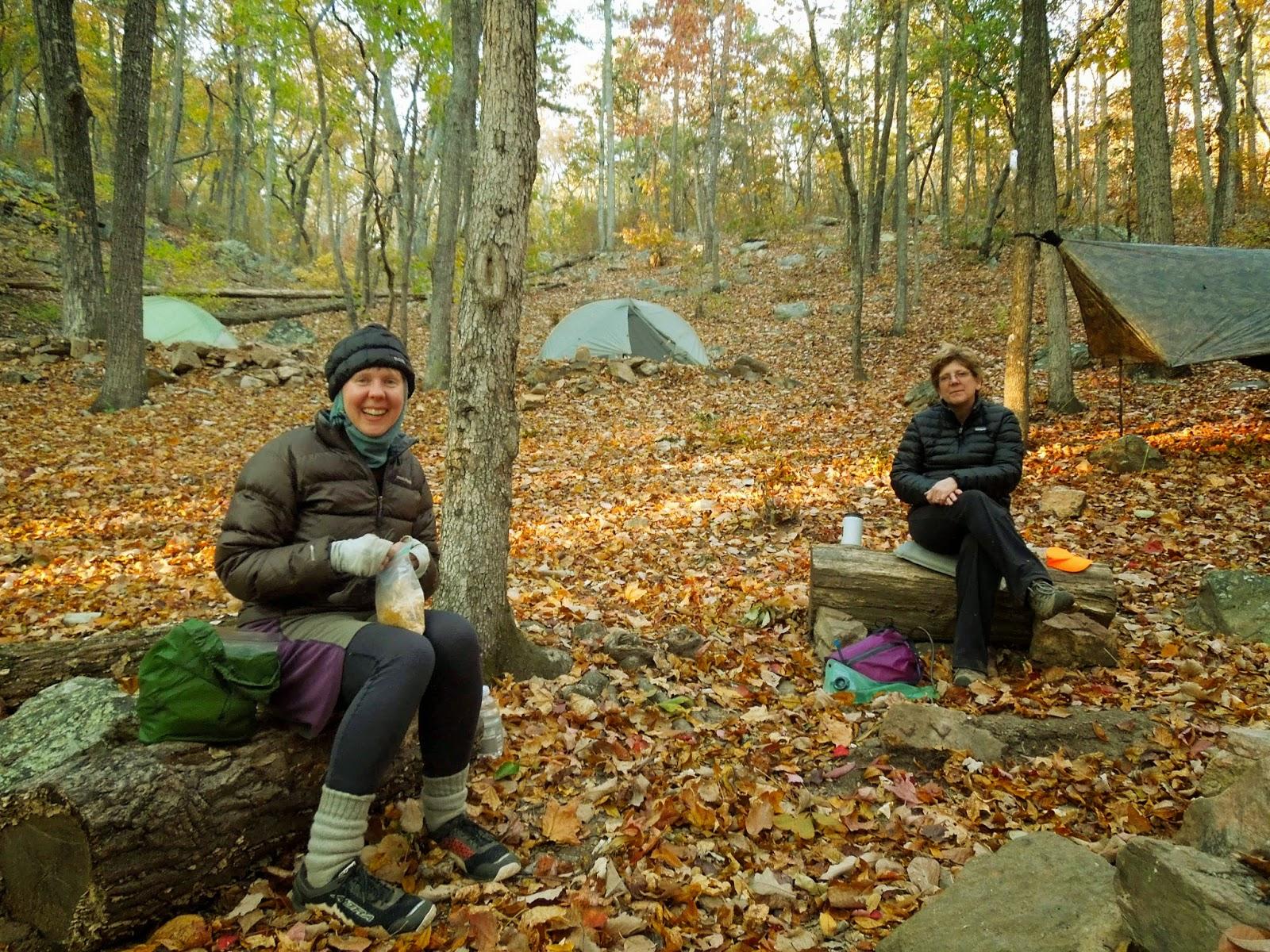 Rambling Hemlock Winter Backpacking At Fdr State Park