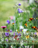 Blommig fredag