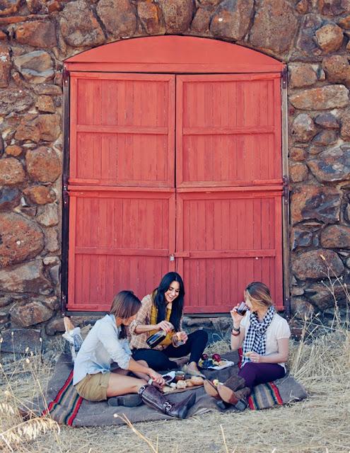 picnic a la sombra