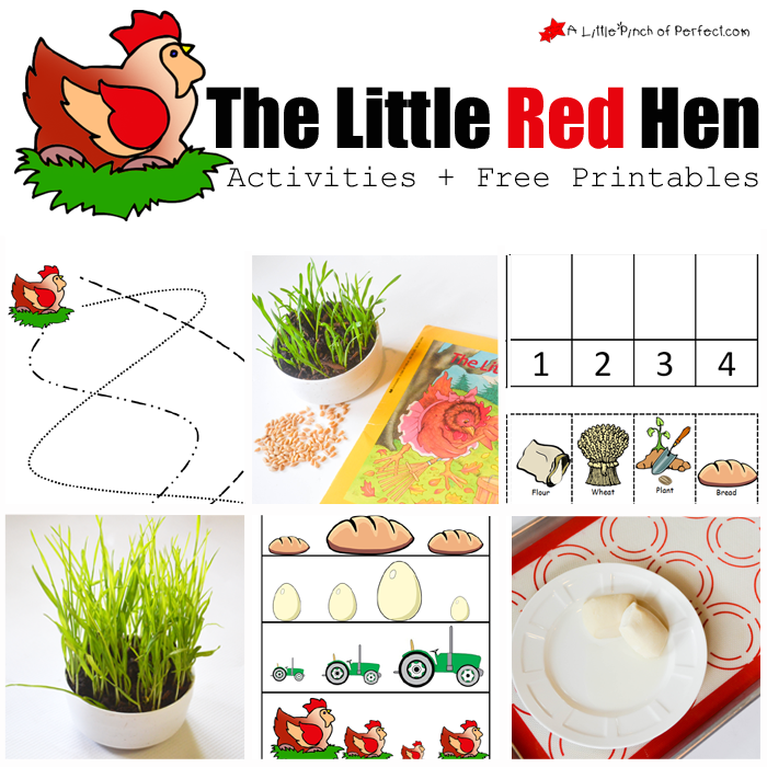 photograph about The Little Red Hen Story Printable identify The Minimal Purple Bird Routines and Absolutely free Printables -