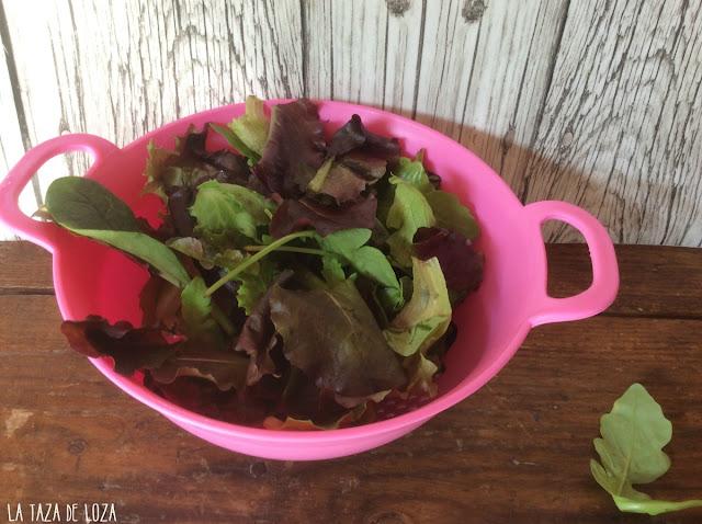 Hojas verdes para ensalada