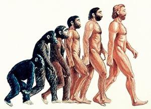 Jenis Manusia Purba Beserta Ciri Khusus dan Tempat Penemuannya di Indonesia