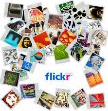 ¡Visita nuestra galería de fotos!