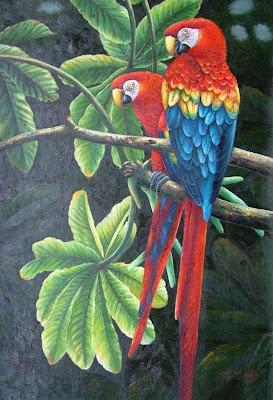 cuadro-con-guacamaya.roja