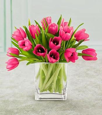 jual bunga tulip pink elegant