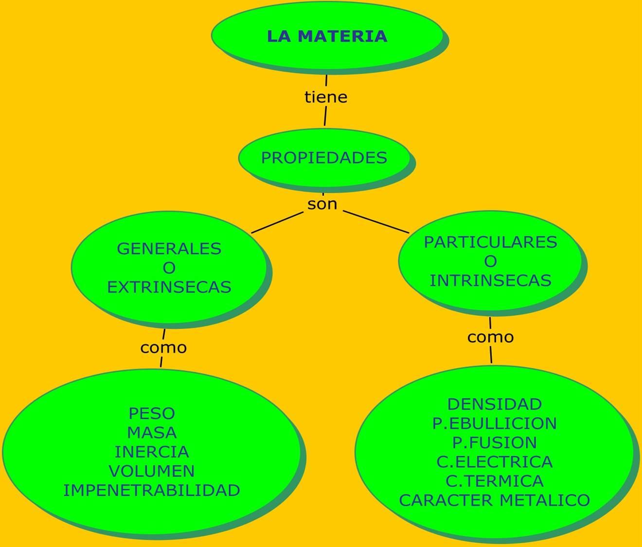 Ecosistema - Wikipedia, la enciclopedia libre