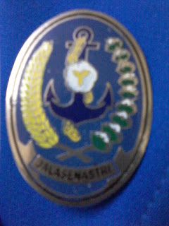 Pin Jalasenastri