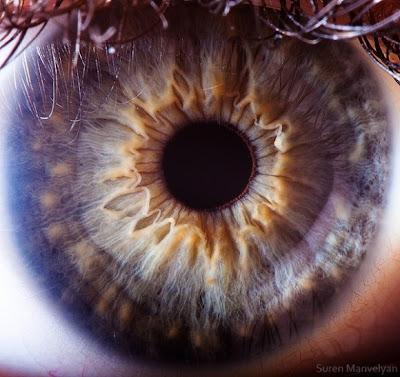 صور لاجمل عيون