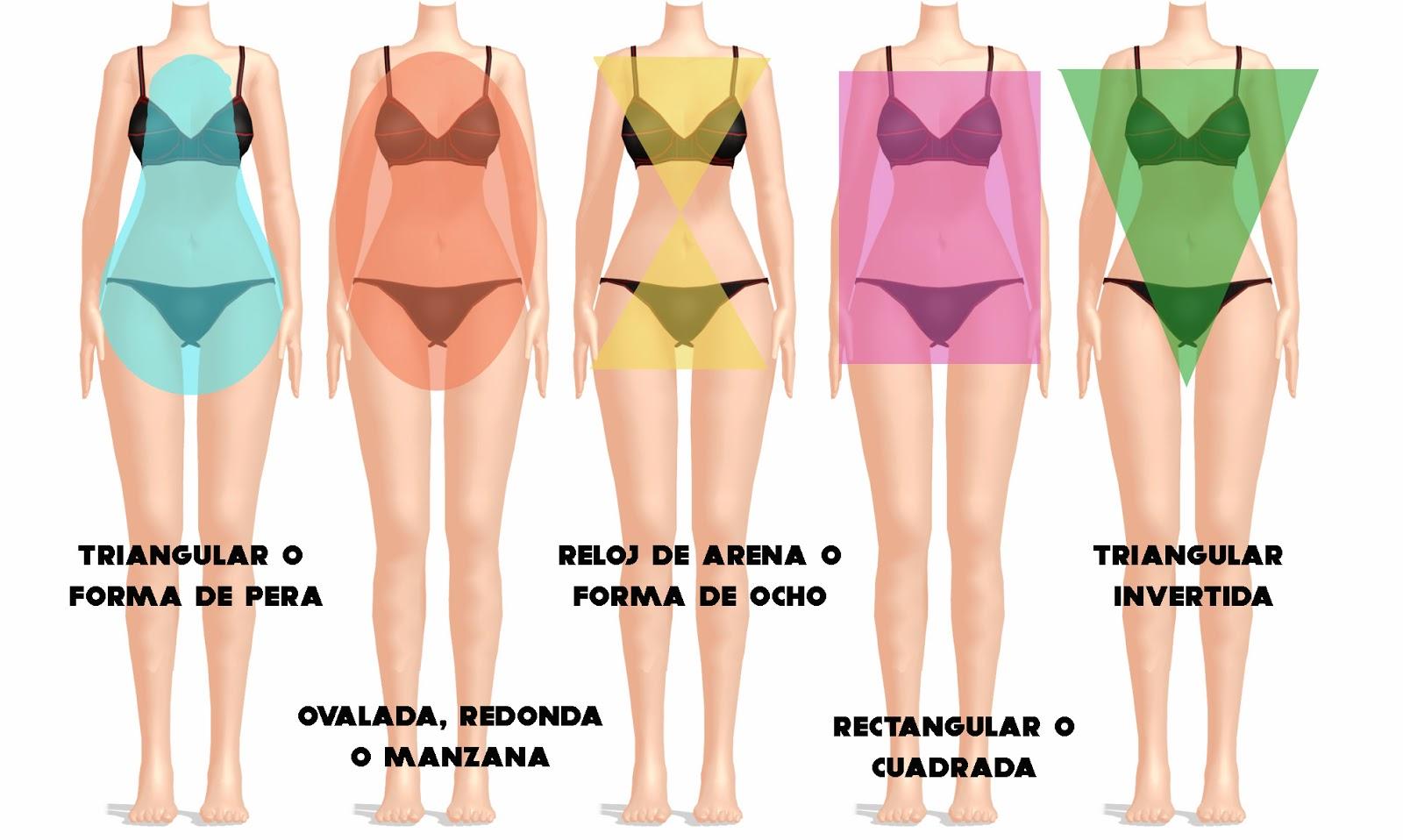 Tipologías de cuerpos