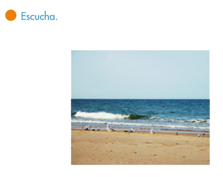 http://www.primerodecarlos.com/SEGUNDO_PRIMARIA/enero/tema2/actividades/cono/estados_agua.swf