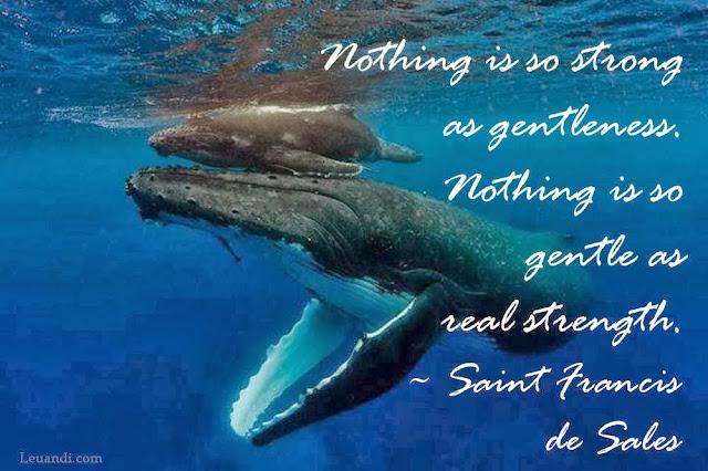 strength, gentleness, Saint Francis de Sales, whales