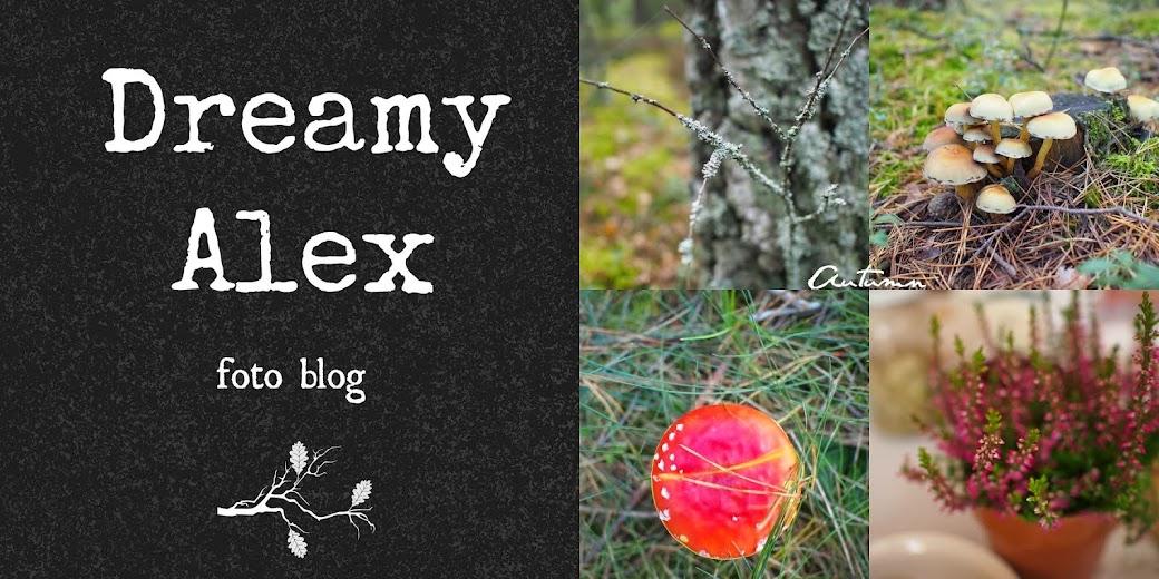 Dreamy Alex
