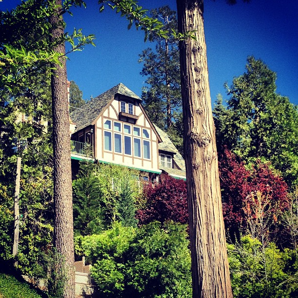 houses in the woods, lake arrowhead, through the trees