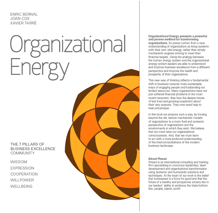 Organizational Energy 7 pillars of business excellence