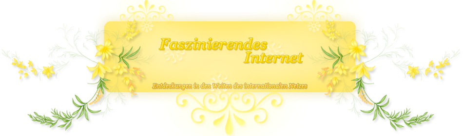Internetfaszination
