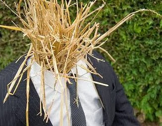 [Image: straw+man.jpg]