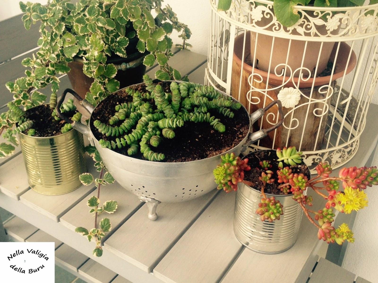 Nella valigia della buru giardino e balcone realizzare - Portavasi fai da te ...
