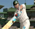 play World Cricket Championship game Online