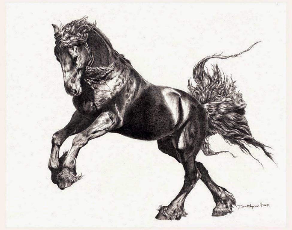 el-mejor-dibujo-de-caballo-a-lapiz