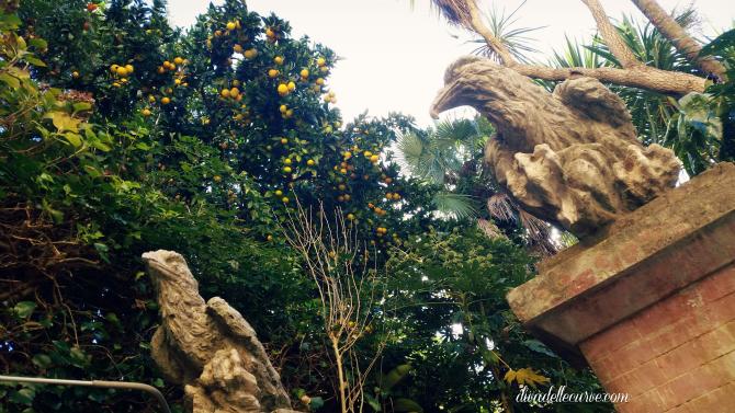 giardino mediterraneo con limoni