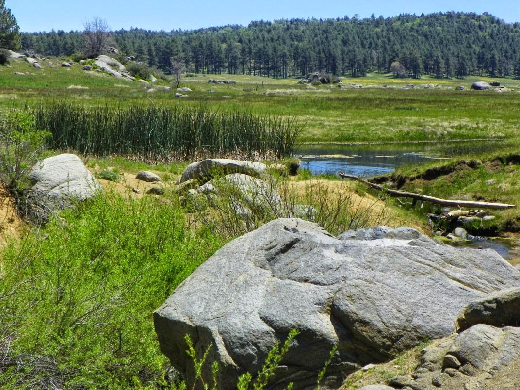 ARMCHAIR HIKER San Diego Inland Hikes