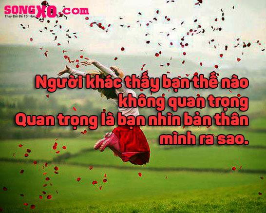 bai-hoc-xuong-mau-2