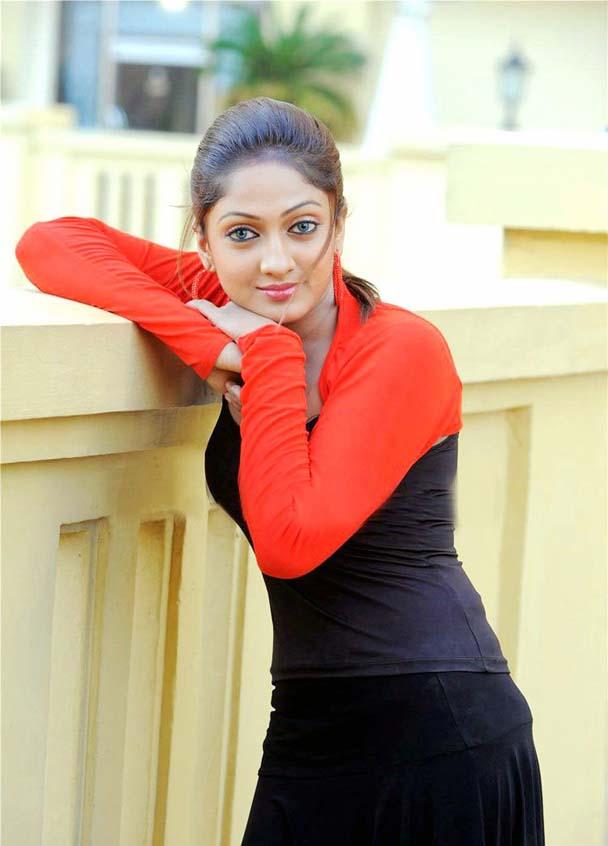 hot sexy photo gallery of telugu actress   sheela   indian cinema