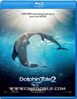 Dolphin Tale 2 (2014) 720p Latino