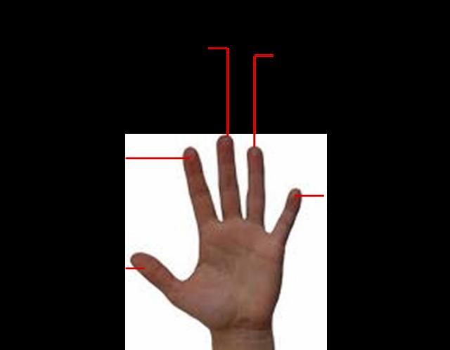 dolor en la punta de los dedos: