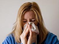 7 Cara Mengobati Flu Dengan Bahan Alami