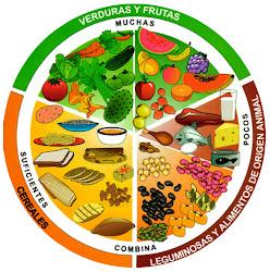 Hábitos de vida saludable.