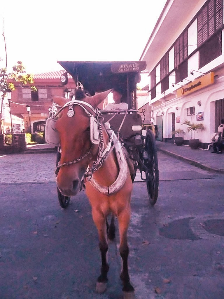 kalesa at Vigan