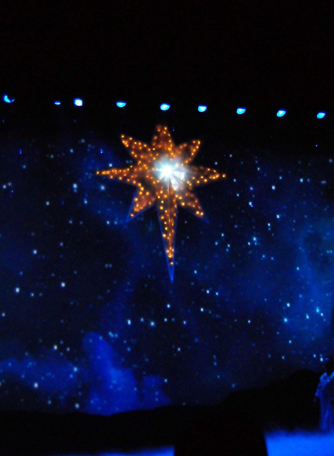 NewsPlusNotes: Scott & Carol Present Christmas at Sea World Orlando