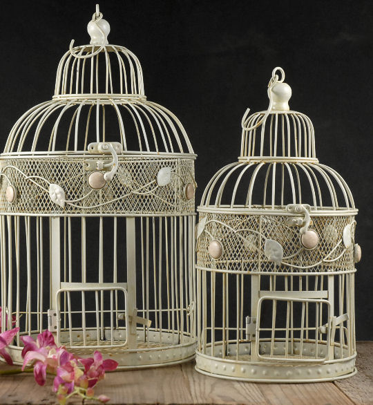 Bird cages decorative for Cage d oiseau decorative