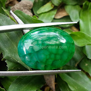 Batu Permata Sisik Naga - SP595