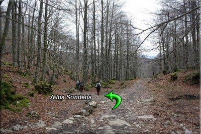 Abandonamos el Camino de Santiago