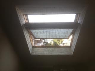 Katzennetz an Dachfenster