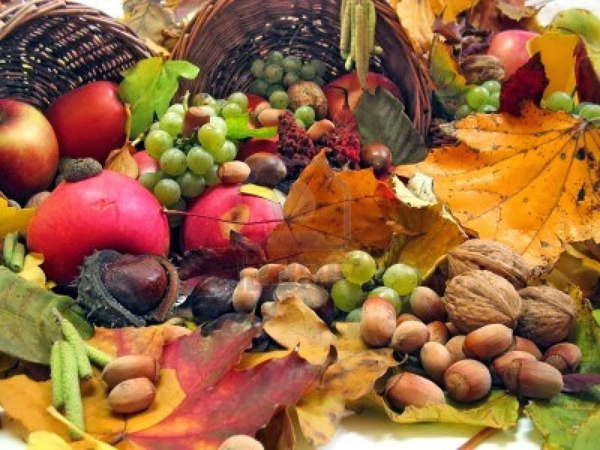 Ecole maternelle publique carpeaux d gustation de fruits - Fruits automne maternelle ...