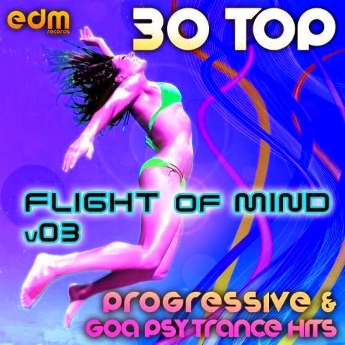 Flight Of Mind Vol.3: 30 Progressive & Goa Psy Trance Hits
