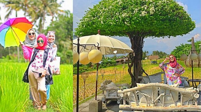Di Seminyak Bali, Desainer Ini Memilih Menginap di Villa Tengah Sawah, Bukan di Hotel