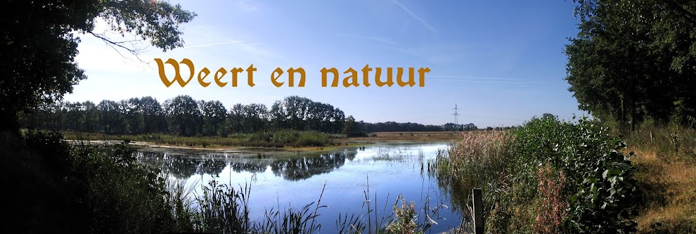 Weert en natuur