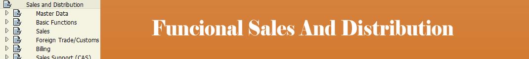 Funcional Sales and Distribution: Lista de Transações SAP - N à O