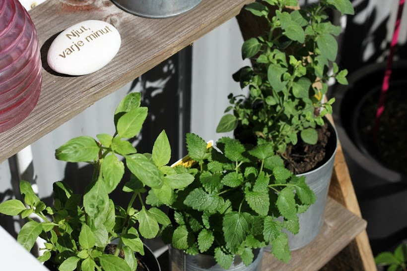 planteringstrappa, planteringsstege
