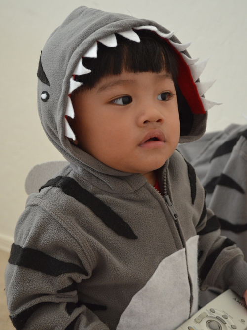 Easy DIY Halloween Costume Shark, Tiger Shark DIY Costume