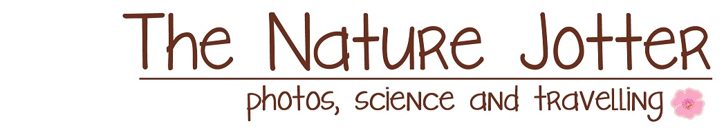 The Nature Jotter
