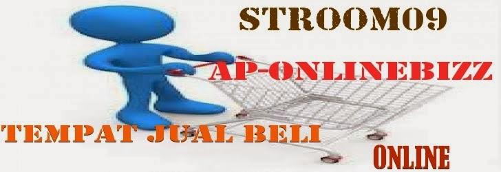 stroom09ap-onlinebizz.